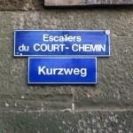 Züritütsch in Genève