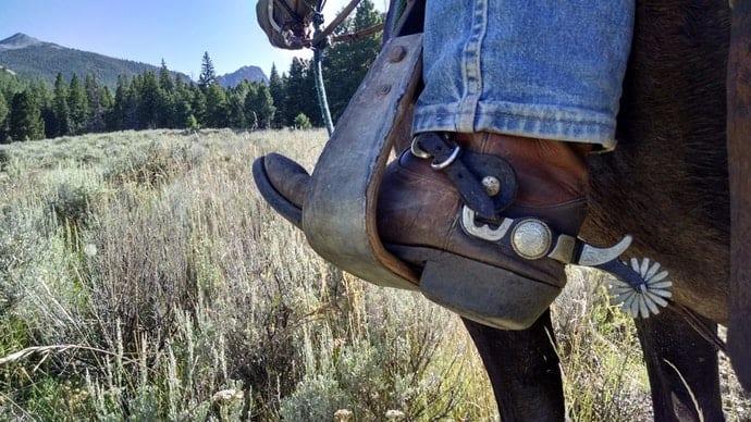 Cowboy_Stiefel